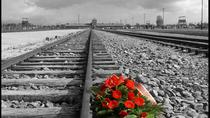 Super Saver : Auschwitz-Birkenau Small-Group Tour from Krakow and Jewish Krakow Walking Tour ...