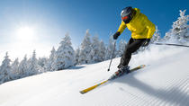 Seoul Ski Tour: Yangji Pine Resort or Jisan Forest Resort, Seoul, Ski & Snow