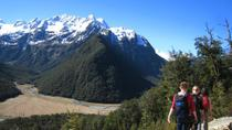 Routeburn Track Guided Hike from Queenstown, Queenstown, Hiking & Camping