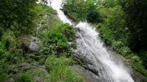 Cool Breeze Waterfall Tour, Guanacaste and Northwest, Nature & Wildlife