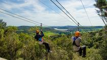 Auckland Shore Excursion: Waiheke Island Tour With Zipline Adventure, Auckland