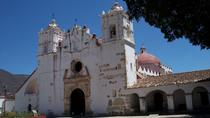 El Tule Teotitlan Village and Mitla Ruins Tour from Oaxaca, Oaxaca, Day Trips