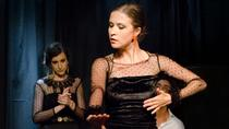 Seville 2-Hour Flamenco Tour, Show and Workshop , Seville, Cultural Tours