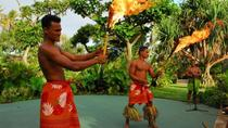 Small-Group Polynesian Cultural Center, Dole Plantation and North Shore Day Trip, Oahu, Half-day...