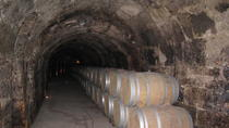 Guided Wine Day Tour to Ribera del Duero from Madrid, Madrid, Day Trips