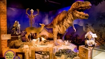 Combo Londres: Ripley's Believe It or Not! Ingresso e refeição no Planet Hollywood, ...