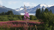 Juneau Sightseeing and Mendenhall Glacier Tour with Seafood Lunch or Dinner on Mt Roberts, Juneau, ...