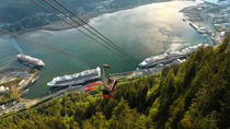 Whale-Watching Cruise with Seafood Lunch or Dinner atop Mt Roberts, Juneau