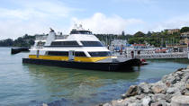 San Francisco Ferry: Sausalito or Tiburon, San Francisco, Bus & Minivan Tours