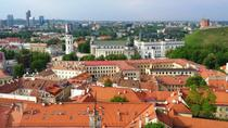 Small-Group Food and History Walking Tour of Vilnius, Vilnius