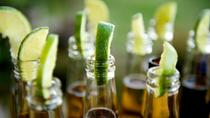 Viator Exclusive: Corona Brewery Tour and Beer Tasting in Mexico City, Mexico City