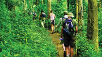 4-Night Hill Tribe Village Tour with Thai Jungle Trek from Chiang Mai, Chiang Mai