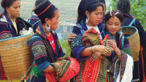 4-Night Sapa and Hill Tribes Trek with Round-Trip Transport from Hanoi, Hanoi, Custom Private Tours