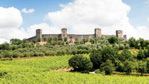 Chianti and Siena Half Day Tour with Dinner in Piazza del Campo, Florence, Day Trips