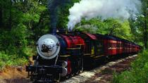East Texas Train Tour on the Texas State Railroad, Texas, Rail Services