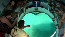 Key West Combo: Glass Bottom Boat Tour, Snorkeling and Dolphin Viewing , Key West, Day Cruises