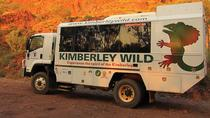 14-Day Camping Tour from Darwin To Broome Including the Bungle Bungles, Darwin