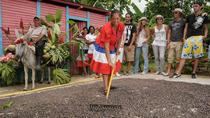 Authentic Dominican Republic Tour from Punta Cana, Punta Cana, Day Trips