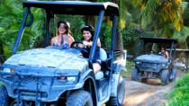 Punta Cana Combo Tour: Off-Road Buggy and Catamaran with Lunch, Punta Cana, Snorkeling