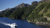 Resurrection Bay Cruise from Seward Including Lunch on Fox Island, Seward, Day Cruises