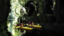 Tauranga Shore Excursion: Scenic Lake McLaren Kayak Tour, Tauranga, Kayaking & Canoeing