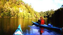 Tauranga Shore Excursion: Wairoa River Kayak Tour, North Island, Ports of Call Tours