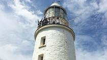 Big Bruny Island Day Trip from Hobart Including Guided Tour of Cape Bruny Lighthouse, Hobart, Day ...
