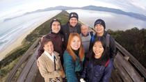 Small-Group Bruny Island Gourmet Safari from Hobart, Hobart, Food Tours