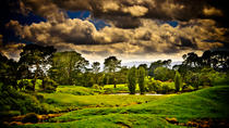 Tauranga Shore Excursion: Lord of the Rings Hobbiton Movie Set Tour Including Rotorua Sightseeing, ...