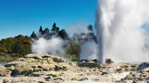 Tauranga Shore Excursion: Rotorua Highlights, North Island