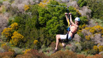 Catalina Island Zipline Eco-Tour from Anaheim or Los Angeles , Anaheim & Buena Park, Ziplines