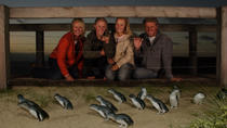 Phillip Island Penguin Parade and Wildlife Day Trip from Melbourne, Melbourne, Day Trips