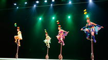 Acrobatic Show and Beijing Duck Dinner with Private Hotel Transfer, Beijing, Theater, Shows & ...