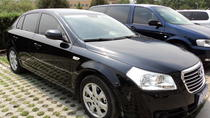 Private Arrival Transfer From the Chengdu Airport to Your Hotel, Chengdu, Airport & Ground Transfers