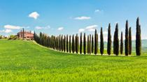 Luxury Tuscan Villa Experience Including Lunch and Wine Tasting, Florence, Private Sightseeing Tours
