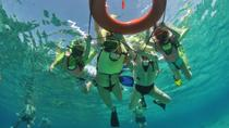 Caribbean Snorkel Tour in Grand Turk's Coral Reef, Grand Turk, Half-day Tours