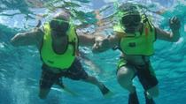 Grand Turk Shore Excursion: Caribbean Snorkel Tour in Grand Turk's Coral Reef, Grand Turk, Ports of ...