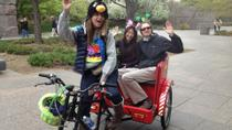 Washington DC Wine-Tasting Tour by Pedicab, Washington DC, Hop-on Hop-off Tours