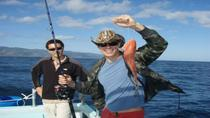 Small-Group Sport Fishing Adventure from Oahu, Oahu, Fishing Charters & Tours