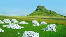6-Day Fully Guided Tour of Kwa-Zulu Natal Battlefields and Hluhluwe Safari from Johannesburg, ...