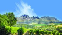 Cape Winelands Guided Day Tour from Cape Town, Cape Town, Wine Tasting & Winery Tours