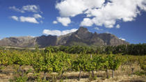 Private Tour: Stellenbosch and Franschhoek Wine, Culture and History Day Trip from Cape Town, Cape...