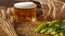 Brewery Experience, Paphos