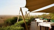 Conservation Drive With Refreshments at Al Maha Desert Resort and Transport from Dubai, Dubai, 4WD, ...