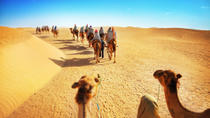 Luxury Desert Experience: Camel Safari with Dinner and Emirati Activities with Transport from ...