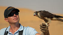 Private Tour: Falconry Experience and Wildlife Tour in Dubai with Optional Breakfast, Dubai, 4WD, ...