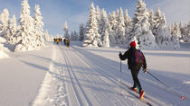Cross-Country Ski Rental in Lake Tahoe, Lake Tahoe