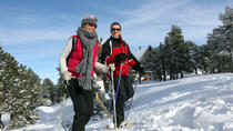 South Lake Tahoe Snowshoe Rental, Lake Tahoe, null