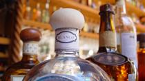 Combo Tour: Cozumel Island and Tequila Tour, Playa Mia Beach Park and Discover Mexico Park, Cozumel