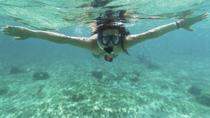 Cancun Snorkel Safari from Puerto Aventuras, Playa del Carmen, 4WD, ATV & Off-Road Tours
